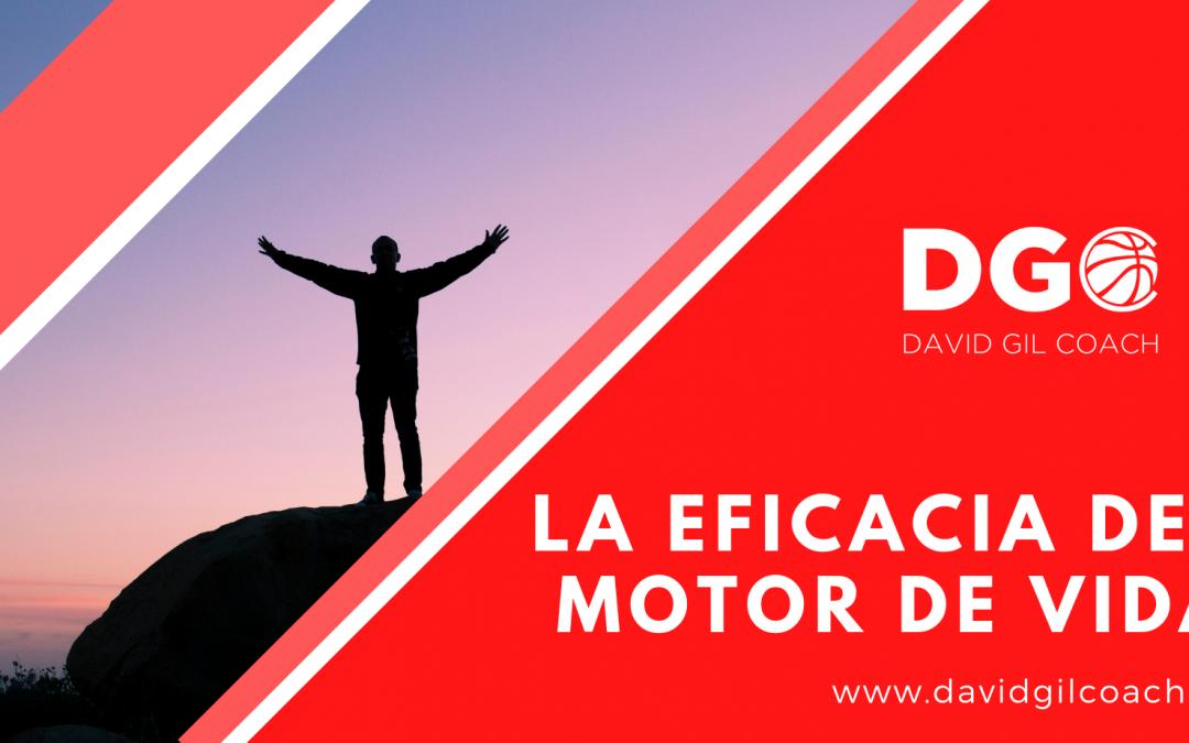 LA EFICACIA DEL MOTOR DE VIDA